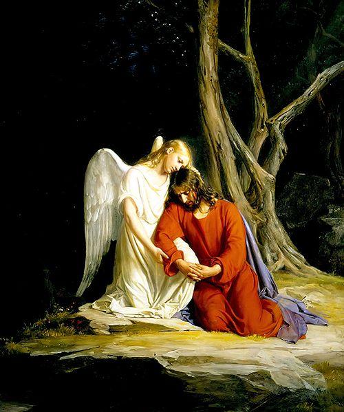 """Letanías del corazón de Jesús """"Corazón de Jesús, desgarrado por nuestros pecados"""""""
