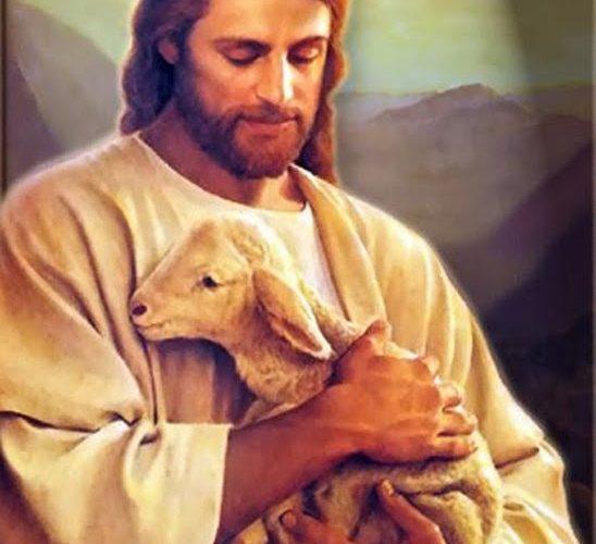 El corazón de Cristo es la perfecta realización del amor de Dios
